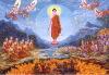 truth-12-reasons-buddha-6.jpg