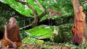 """""""ขยับมานี่ จะบอกคาถาลี้ช้างลี้เสือให้"""" จากคำบอกของหลวงปู่สรวง!!!... เมื่อได้คาถาดีจากหลวงปู่ฝั้น อาจาโร ขณะอยู่ที่ถ้ำขาม"""
