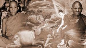 อดีตชาติครูบาศรวิชัย ช้างป่าเลไลย์ อนาคตกาลข้างหน้าจะสำเร็จเป็นพระพุทธเจ้า หลวงปู่ตื้อย้ำชัด!!!