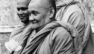 เรื่องของจิต, แต่ผู้รู้คือปัญญา ตามรู้ ตามเป็นจริง : หลวงปู่ชา