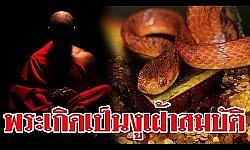 พระมาเกิดเป็นงูเฝ้าทรัพย์สมบัติ
