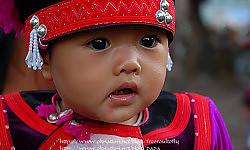 ประวัติหลวงปู่มั่น ภูริทัตโต47ชนเผ่าชาวเขาได้ดวงตาเห็นธรรม