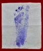 รอยเท้า ลพ.กวย-2.jpg