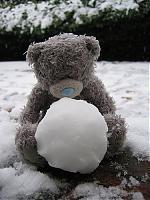 winterball