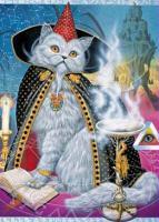 Siamese Wizard