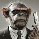 MonkeyAstro
