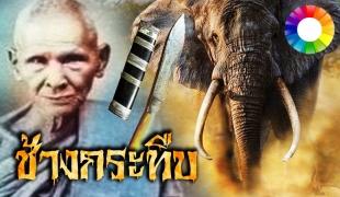 หลวงพ่อเดิม วัดหนองโพ ได้ช้างคู่บุญ โดนช้างตกมันกระทืบ ลุกขึ้นมาหน้าตาเฉย ใช้มีดหมอกำราบ