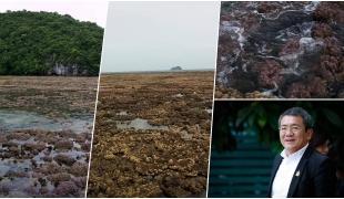 กูรูภัยพิบัติ ไขข้อข้องใจ!! น้ำทะเลลดฮวบ หรือไทยจะเกิดสึนามิ?