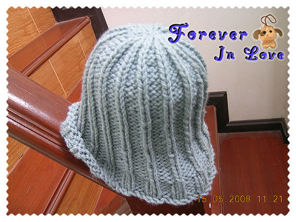 2in2 my knitting hat