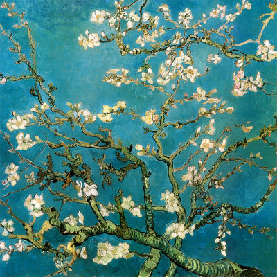 8646~Almond Branches in Bloom San Remy c 1890 Posters