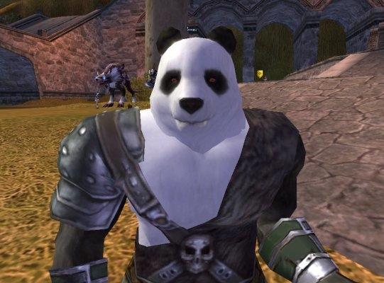ลุงลังจัง.....เป็นตัวเก่าเป็นหมีแพนด้าค่ะ