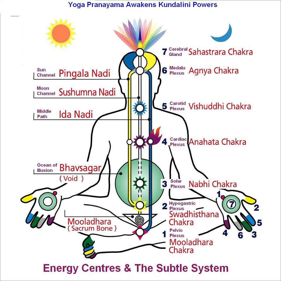 Yoga Pranayama Awakens Kundalini Powers