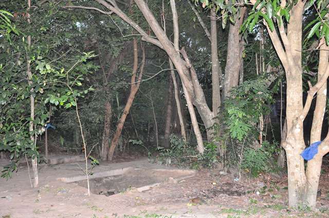 012 วัดป่า 24052552