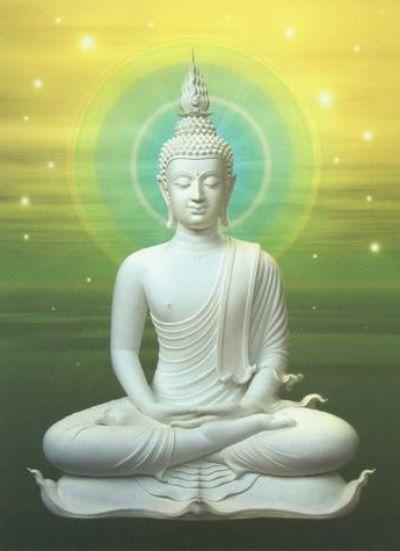 Buddha 20