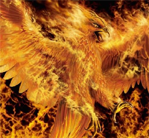 uh phoenix