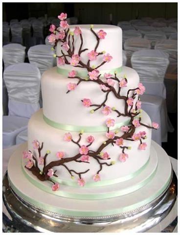 Cake24