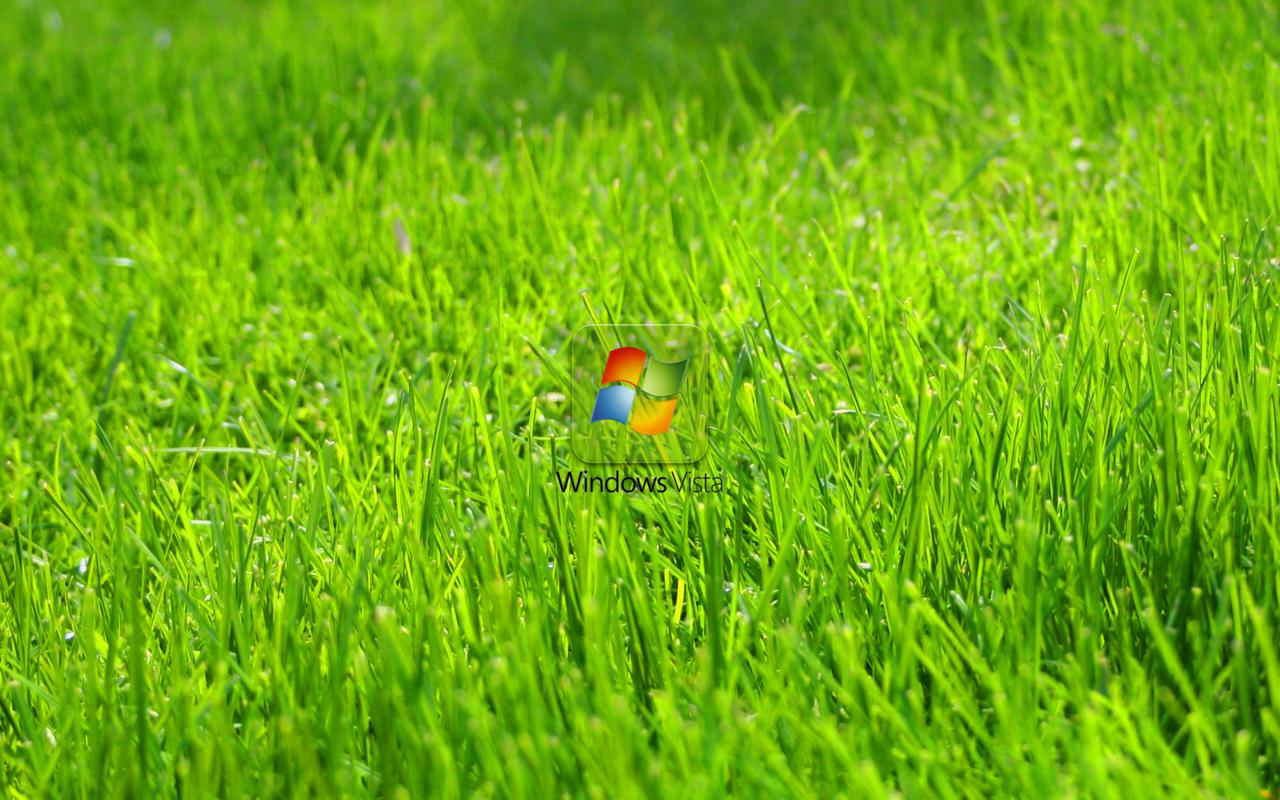 windows vista green grass big wallpapers