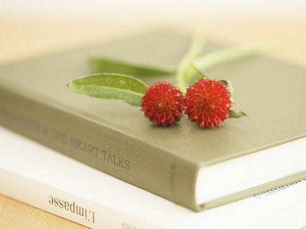 interior sweet flowers art 12001