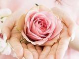 %5Bwallcoo com%5D 0HR022 350A Wedding Fowerss