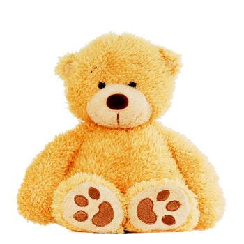 1262 honey bear