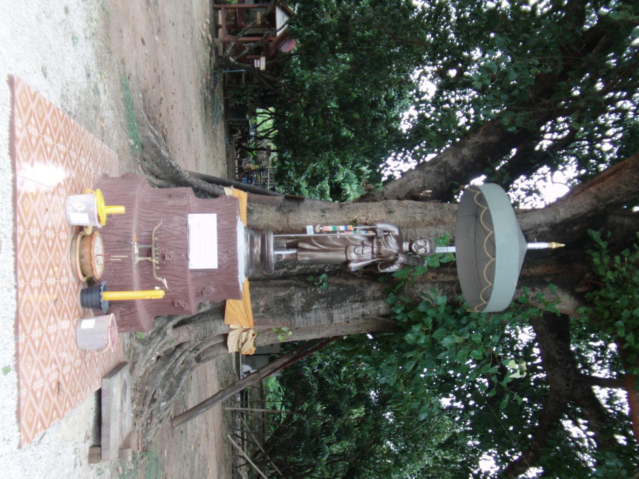 SANY0023