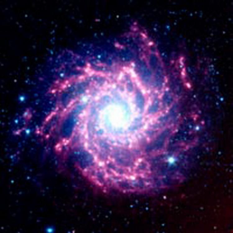 NGC628 Supernova 200