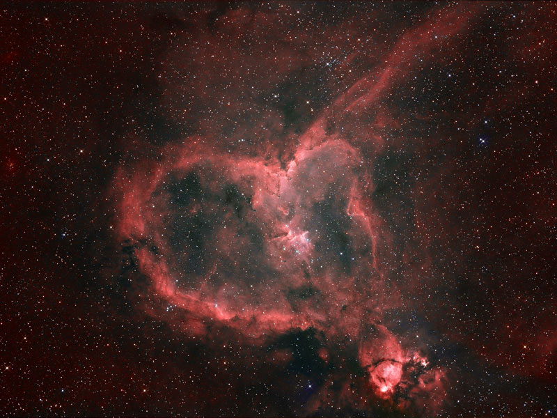heart russell