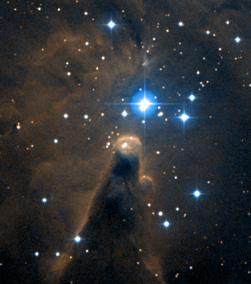 NGC 2264 00