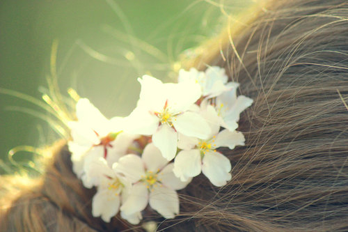 flowers in her hair by missfortunex d3e792e large