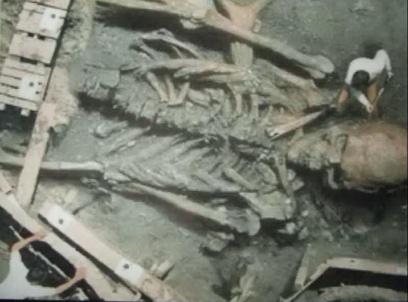 67.Ancient Human