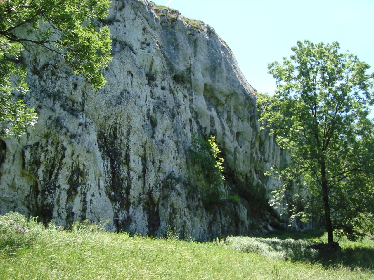 06   2009 (หิน)