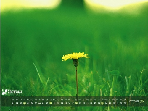 desktop wallpaper calendar background natural green october 2009 1024x768 thumb[6]