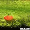 1286525820 green grass umbrella ipad wallpaper