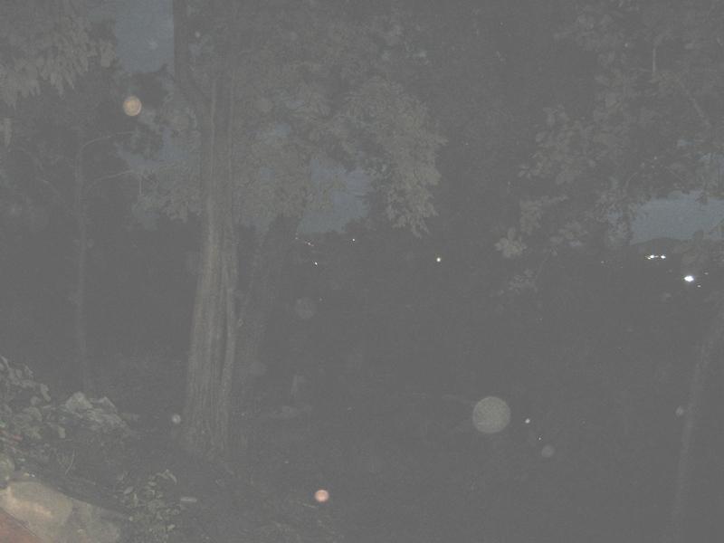 ดวงธรรมยามเช้ามืด สุสานจีนหลังสนามสุระกุล