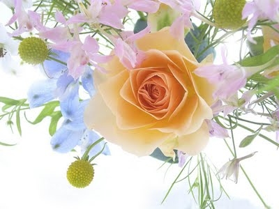 Flowers a Spring Bouquet with a Rose 1 206SV74N9B 1024x768