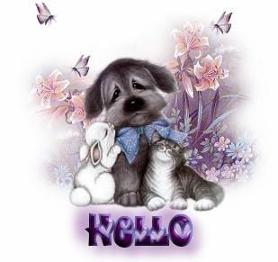 1 Hello anifrsct vi