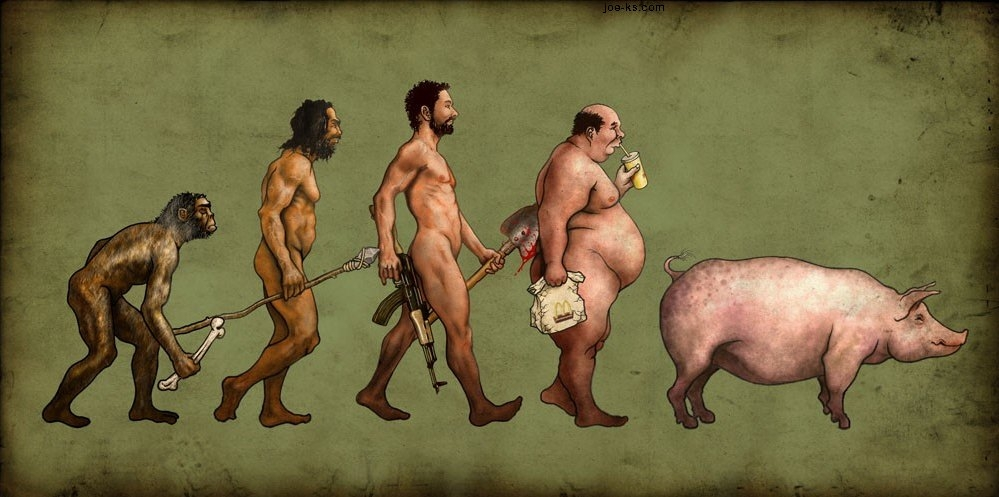 Evolution Of Male 1