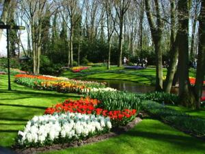 DSCF1436สวยจริงๆ ค่ะ นอน เล่นนั่งเล่น ทั้งวัน ทั้งคืนในสวนดอกไม้ ก็ไม่เบื่อค่ะ ดอกขาวๆที่เห็นกลิ่นหอมมากๆค่ะ..ปรกติจะมีหลายสี