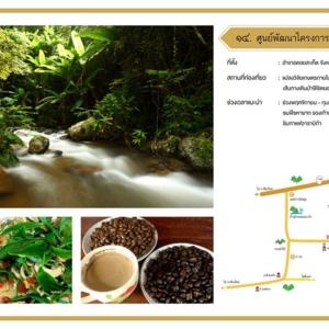 ศูนย์พัฒนาโครงการหลวงป่าเมี่ยง