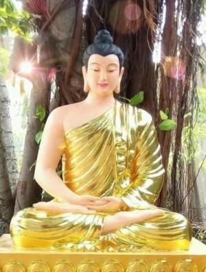 BudhaSamathi