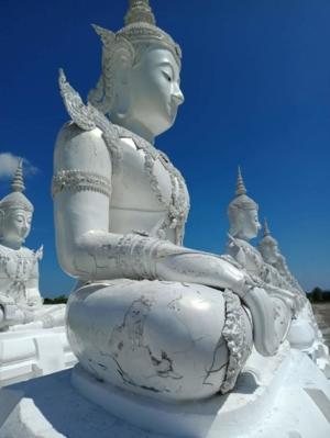 เชิญร่วมทำบุญซ่อมสีพระพุทธรูป 118 องค์ วัดพระพุทธบาทน้ำทิพย์ อ.ภูพาน จ.สกลนคร