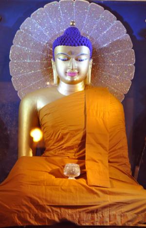 bluehairbuddha