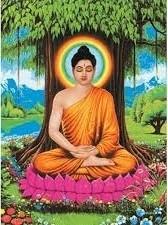 Buddhaandbhothitree
