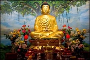 wallpaper Buddha