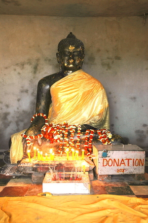 blackbuddha india