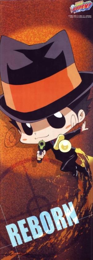[large][AnimePaper]scans Katekyo Hitman Reborn NekoiEchizen(0 36)  THISRES  211791