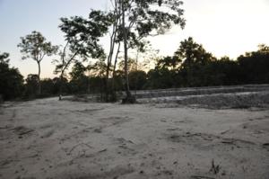 ยามเย็นที่ วัดป่า ๒๔ พ.ค.๒๕๕๒   กลับจากถวายพระไตรปิฎกที่วัดบ้านขัวสูง อ.ดงหลวง จ.มุกดาหาร