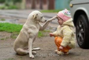 มิตรภาพ