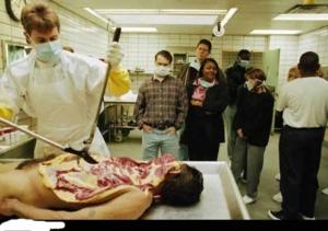 tgb2 หมอผู้นี้กำลังที่จะชันสูตรศพครับ