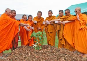 Bodhi at Watphrayortkeo 13
